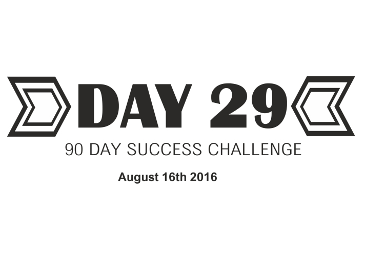 90 day success day 29